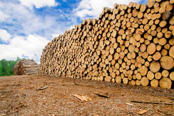 hout behandelen, hout verduurzamen