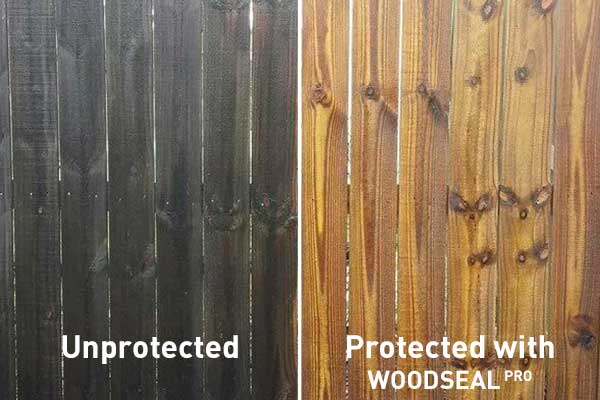 Wood Treatment And Wood Preservation Woodseal Pro